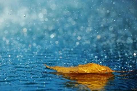 适合下雨天发的唯美短句心情说说