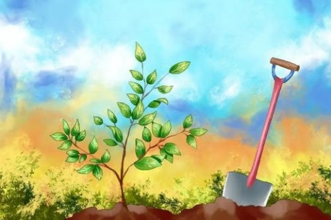 2021年植树节祝福语说说,植树节口号宣传语