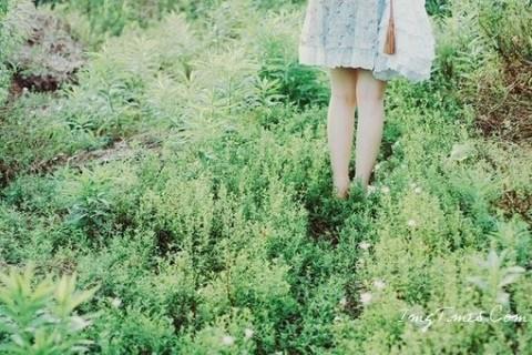 四月你好的说说,阳春四月你好的唯美句子