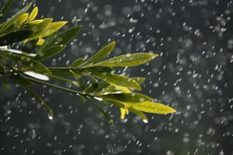 下雨天的心情不好的伤感说说,愿没有我的冬天里你依然温暖如春