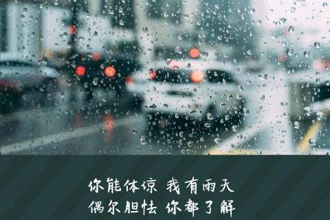 2021年适合下雨天发朋友圈的图文说说大全,每次心情不好都下雨
