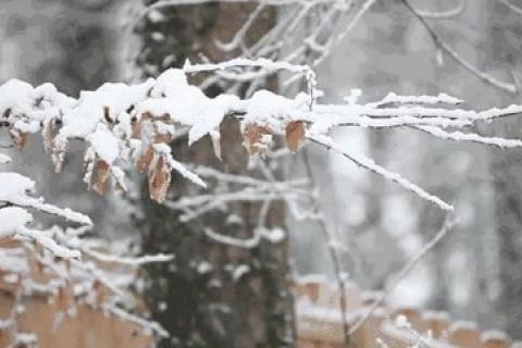 适合下雪天发的温柔浪漫的句子