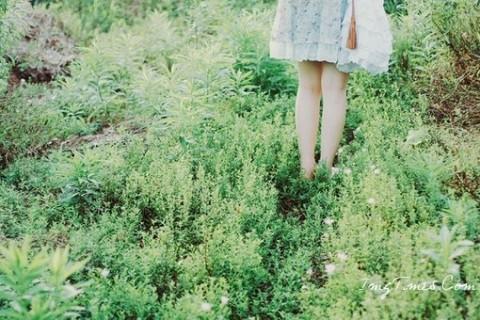 有哪些与春天有关的小众诗词让你觉得艳绝古今