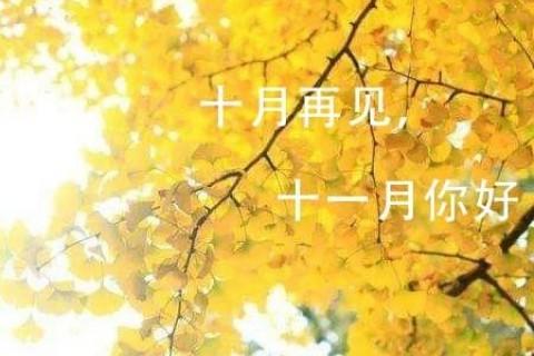 告别金秋十月,迎接十一月的心情说说